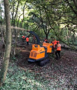 Barlow Tree Surgery carrying out woodland management of a large Estate